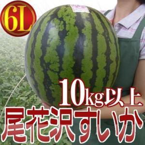 """山形県産 """"尾花沢スイカ"""" 6Lサイズ 1玉 約10kg以上 ちょっと訳あり【予約 7月下旬以降】"""