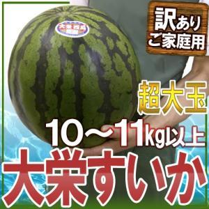 """【送料無料】鳥取県 """"ジャンボ大栄すいか"""" 訳あり 特大5L..."""