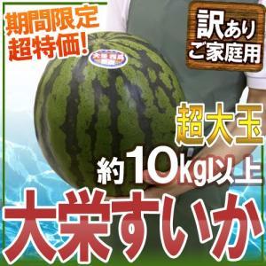 """鳥取県 """"ジャンボ大栄すいか"""" 訳あり 特大5Lサイズ 約1..."""