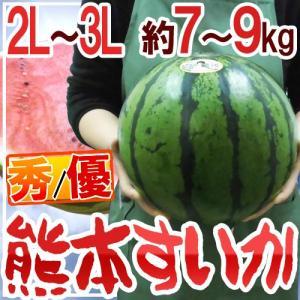 """【送料無料】熊本県産 """"熊本すいか"""" 秀・優品 大玉 2L〜..."""