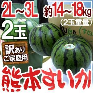 """【送料無料】熊本県産 """"熊本すいか"""" 訳あり 2L〜3Lサイ..."""
