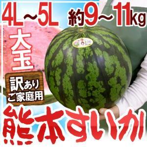 """【送料無料】熊本県産 """"超大玉熊本すいか"""" 訳あり 4L〜5..."""