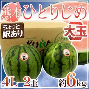 """【送料無料】熊本産 """"小玉すいか ひとりじめ"""" 4L 2玉 ..."""