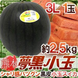 """熊本県 黒皮すいか """"夢黒小玉"""" 3L 1玉 約2.5kg【..."""