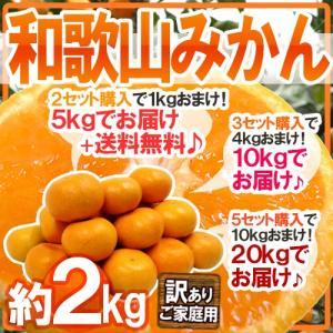 """【送料無料】""""和歌山みかん"""" 訳あり 約2kg 大きさおまか..."""