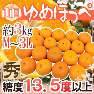 """【送料無料】新品種みかん """"ゆめほっぺ"""" 秀品 M/L/2L..."""