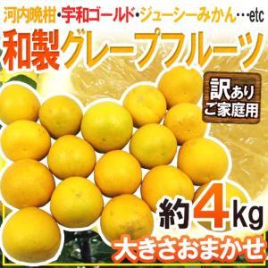 """【送料無料】""""和製グレープフルーツ"""" 約4kg 訳あり 大き..."""