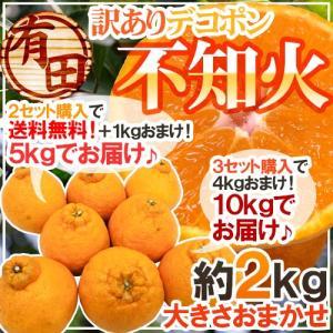 """有田産 """"不知火・しらぬい(訳ありデコポン)"""" 約2kg 大..."""