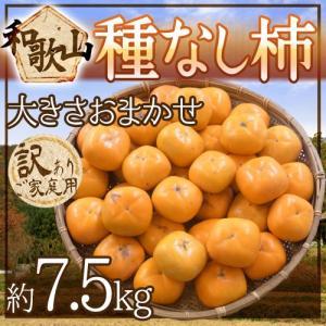 """【送料無料】和歌山産 """"たねなし柿"""" 訳あり 約7.5kg 大きさおまかせ【予約 9月末以降】"""