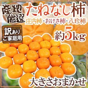 """【送料無料】""""たねなし柿"""" 訳あり 約5kg 大きさおまかせ 産地厳選 種無し柿【予約 10月以降】"""