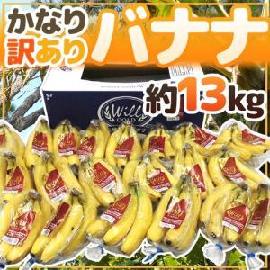 【送料無料】栄養満点♪毎日食べたいヘルシーフルーツ・バナナが訳ありで超お買い得価格!たっぷりボリュー...