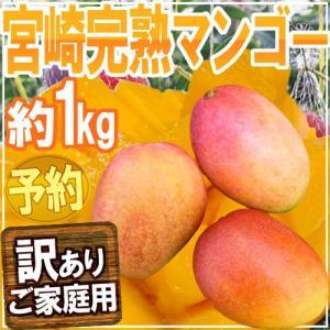 """""""宮崎完熟マンゴー"""" 訳あり 2〜4玉 約1kg♪ 3キロ以..."""