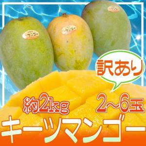 """【送料無料】沖縄産 """"キーツマンゴー"""" 訳あり 2〜6玉前後..."""
