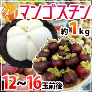 """【送料無料】タイ産 """"マンゴスチン"""" M〜L 12〜16玉前後 約1kg【予約 2月中旬以降】"""