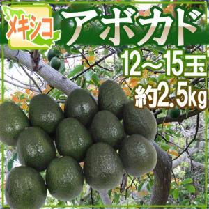 """メキシコ産 """"アボカド"""" 約2.5kg 12〜15玉 美容と健康に効く!マグロのトロみたいな濃厚果実♪"""