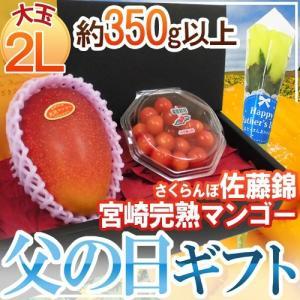 【送料無料】誰もが一度は食べてみたい!ブランドマンゴー「宮崎完熟マンゴー」とさくらんぼの王様・初夏を...