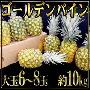 """フィリピン産 """"ゴールデンパイン"""" 大玉 6〜8個 10kg"""