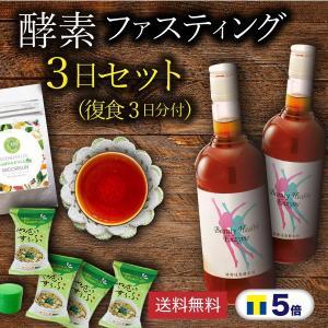 ポイント5倍 酵素ファスティング(断食)ダイエット 3日間チャレンジセット (やさいすうぷ(蕎麦の実...