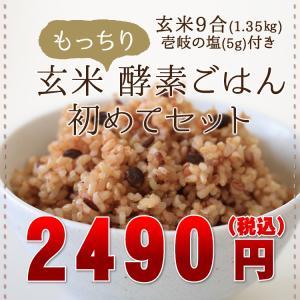 玄米もっちり酵素ごはん はじめてセット 長崎県ヒノヒカリ...