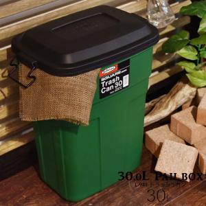 東谷 トラッシュカン ゴミ箱 屋外用ダストボックス ペールボックス 収納ボックス ふた付き グーリン (L-941G)|kurashikan