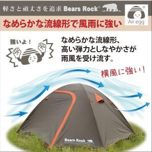 テント スピードテント ドーム キャンプ ファミリー 4人用 コンパクト ツーリング フェス ワンタッチ 一泊 登山 バイク ハヤブサ Bears Rock TM-401|kurayashiki|08