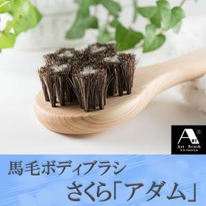 浅草アートブラシ 馬毛ボディブラシ さくら アダム(ブラシクリーナー付)|kurazo