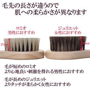 浅草アートブラシ 馬毛ボディブラシ ハート ロミオ(ブラシクリーナー付) kurazo 05