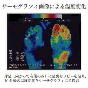 芦原式 足裏セラピー メタルシール(84枚入り)2個|kurazo|04