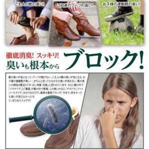 靴の臭い対策 消臭パウダー デオドラントフットソールクリア 2本セット‐除菌 粉 革靴 スニーカー パンプス ブーツ 靴下 予防 EV94405|kurazo|02