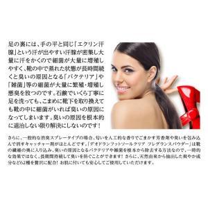 靴の臭い対策 消臭パウダー デオドラントフットソールクリア 2本セット‐除菌 粉 革靴 スニーカー パンプス ブーツ 靴下 予防 EV94405|kurazo|04