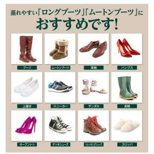 靴の臭い対策 消臭パウダー デオドラントフットソールクリア 2本セット‐除菌 粉 革靴 スニーカー パンプス ブーツ 靴下 予防 EV94405|kurazo|06