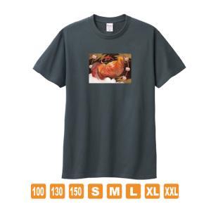 雷の鶏 デニムカラー おかしなせかい オリジナルイラストプリント 半袖 Tシャツ kuriten