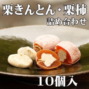 岐阜県 中津川 栗きんとん 5個 栗柿 5個入 合計10個入|kuriya