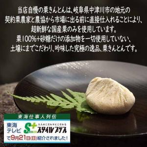 岐阜県 中津川 栗きんとん 5個 栗柿 5個入 合計10個入|kuriya|11