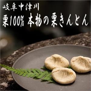 岐阜県 中津川 栗きんとん 5個 栗柿 5個入 合計10個入|kuriya|10