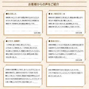 岐阜県 中津川 栗きんとん 10個箱入 和菓子 栗 取り寄せ kuriya 14