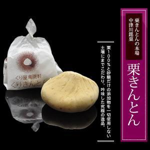 岐阜県 中津川 栗きんとん 10個箱入 和菓子 栗 取り寄せ kuriya 04
