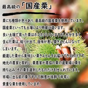 岐阜県 中津川 栗きんとん 10個箱入 和菓子 栗 取り寄せ kuriya 05
