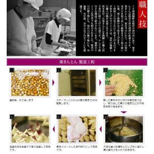 岐阜県 中津川 栗きんとん 10個箱入 和菓子 栗 取り寄せ kuriya 08