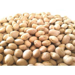 素煎り大豆 500g 国産 チャック袋 500gX1袋 九州工場製造品 黒田屋