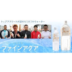 FineAqua ファインアクア プレミアム 500mlx24本|kuroiwasaketen|02