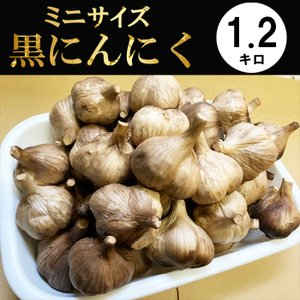 黒にんにく 青森産 小粒 波動熟成 1.2kg 送料無料 |kuroninnikutonya