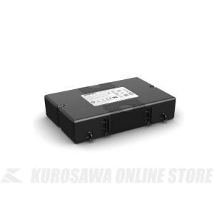 BOSE S1 Pro battery《S1 Pro専用モバイルバッテリー》【送料無料】|kurosawa-unplugged