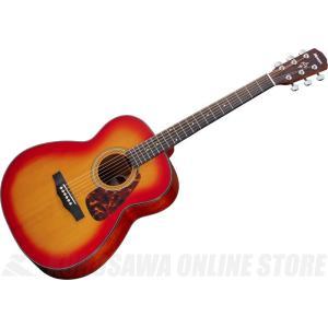 Morris PERFORMERS EDITION F-351 (CS/チェリー・サンバースト)(アコースティックギター) (送料無料)(ご予約受付中)|kurosawa-unplugged