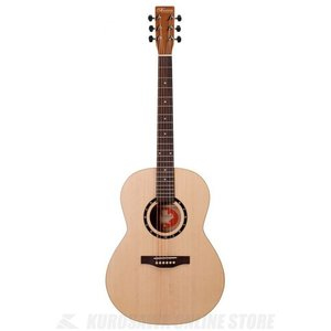 Norman Guitars Encore Series:B20 Folk (アコースティックギター)(送料無料)|kurosawa-unplugged