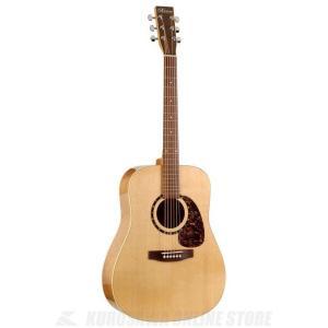 Norman Guitars Encore Series:B20 HG (アコースティックギター)(送料無料)|kurosawa-unplugged