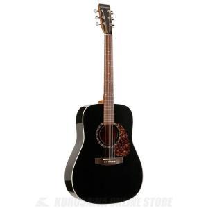 Norman Guitars Encore Series:B20 Black HG (アコースティックギター)(送料無料)|kurosawa-unplugged