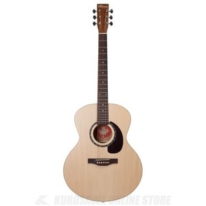 Norman Guitars Encore Series:B20 Mini Jumbo (アコースティックギター)(送料無料)|kurosawa-unplugged