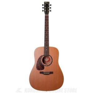 Norman Guitars Protege Series:B18 LEFT (アコースティックギター)(送料無料)|kurosawa-unplugged