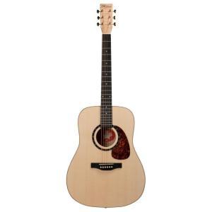 Norman Guitars Studio Series:B50  (アコースティックギター)(送料無料)|kurosawa-unplugged